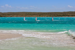 windsurfers foto de archivo