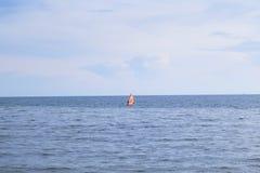 windsurfers Стоковые Изображения
