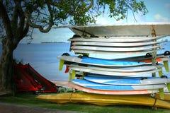 Windsurfers auf tropischer Insel Stockbild