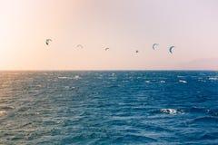 Windsurfers che navigano in rosso mare Fotografie Stock Libere da Diritti