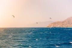 Windsurfers che navigano in rosso mare Fotografia Stock