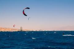 Windsurfers che navigano in rosso mare Fotografia Stock Libera da Diritti