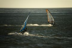 Windsurfers Cross Royalty Free Stock Images