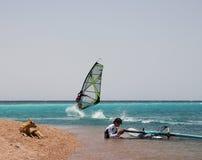 Windsurfers e um cão. Imagens de Stock Royalty Free