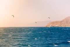 Windsurfers żegluje w Czerwonym morzu Fotografia Stock