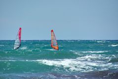 Windsurfers at sea, Holland Stock Photo