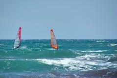 Windsurfers at sea, Holland Stock Photo
