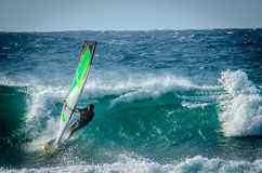 Windsurfers Surfing on Maui northshore. Windsurfers on big waves on Maui northshore having fun Royalty Free Stock Images