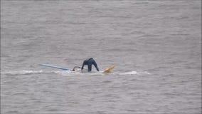 Windsurfers w szkoleniu zbiory wideo