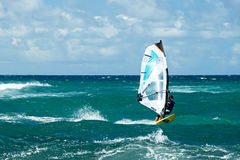 Windsurfers in windy weather on Maui Island Royalty Free Stock Images