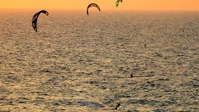 WindSurfing το καλοκαίρι στοκ φωτογραφία με δικαίωμα ελεύθερης χρήσης