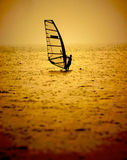 WindSurfing Fotografia de Stock Royalty Free