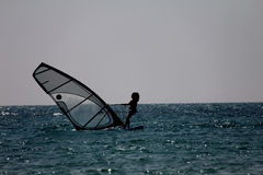 Windsurfing Stock Photography