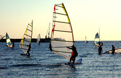 Windsurfing. School Royalty Free Stock Photo
