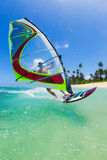 windsurfing Foto de Stock