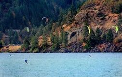 windsurfing imagens de stock