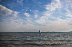 windsurfing royalty-vrije stock fotografie