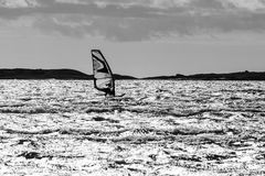 Windsurfing in action Royalty Free Stock Image