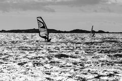 Windsurfing in action Royalty Free Stock Photography