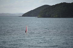 Windsurfing around Bay of Islands Stock Image