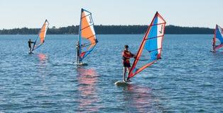 Windsurfing auf Tauranga-Hafen. Stockfotografie