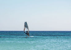 Windsurfing on the board with a sail on the sea waves Royalty Free Stock Photos