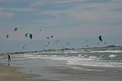 Windsurfing Competition in the Camargue Royalty Free Stock Image
