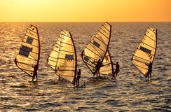 Windsurfing at the golden sunset in the Mediterranean Sea Royalty Free Stock Photo