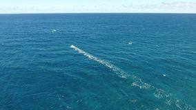 Windsurfing extreme summer sport in calm deep blue turquoise ocean water on sunny day in 4k aerial drone seascape view. Windsurfing extreme summer sport in calm stock footage