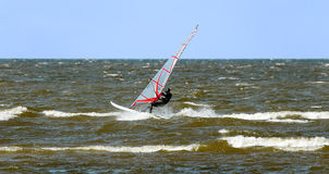 Windsurfing in the Gulf of Finland Stock Image