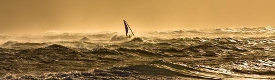 Windsurfing in Hawai Fotografia Stock