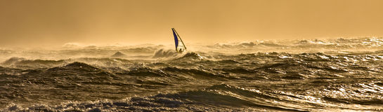 Windsurfing in Hawaii. A windsurfer is riding along the beautiful Maui's shores while the sun is slowly setting on a perfect day stock photography