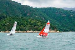 Windsurfing in Hongkong op het groene overzees royalty-vrije stock afbeeldingen