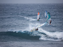 Windsurfing at Hookipa beach Maui. World famous spot for the sport, where the wind always blows Royalty Free Stock Photo
