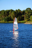 Windsurfing on a lake. Windsurfer on a lake with forest as background. Kaunas city, Lithuania Stock Photography