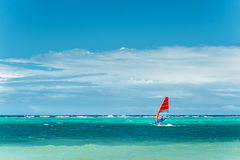 Windsurfing.  Lifestyle and sport concept. Man on windsurf. extreme sport, active lifestyle. Royalty Free Stock Images