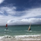 Windsurfing in Maui stock afbeeldingen