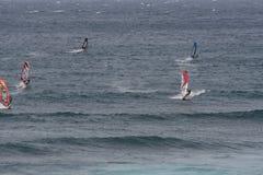Windsurfing in Maui stock foto