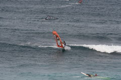 Windsurfing in Maui Royalty Free Stock Photography