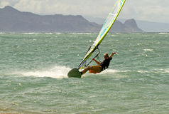Windsurfing on Maui Royalty Free Stock Photos