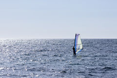 Windsurfing morze Obrazy Royalty Free