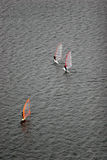 Windsurfing. Moscow river training of vidsanimated Stock Photography