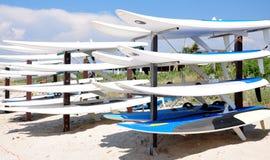 Windsurfing na praia Imagem de Stock Royalty Free