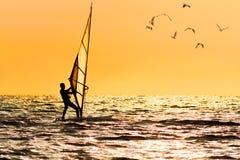 Free Windsurfing On Orange Sunset`s Background Royalty Free Stock Image - 95268726