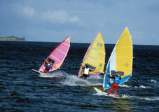 Windsurfing Race. Windsurfer's race offshore the island Fehmarn Baltic sea in Germany Stock Photo