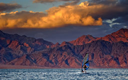 Windsurfing in the Red Sea. Windsurfing with sail is popular marine sport Stock Images