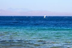 Windsurfing in Red sea, Egypt Stock Photography
