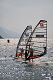 Windsurfing regatta Royalty Free Stock Photography