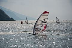 Windsurfing regatta Stock Images