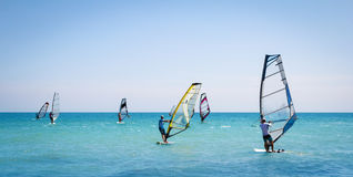 Windsurfing sails on the blue sea Stock Photography